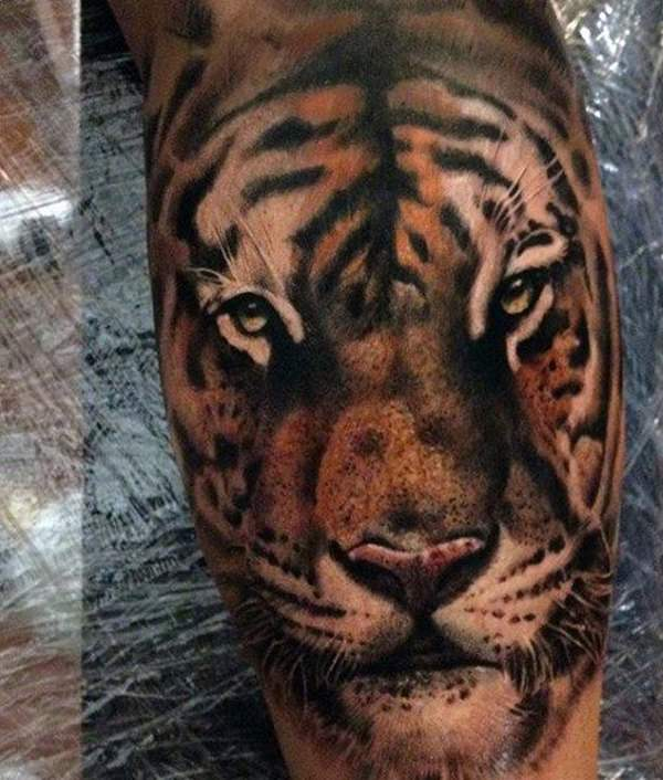 1de81233f Baby Tiger Tattoos are also gaining attention these days. This is more  common in women than in men. Baby tigers, or cubs, have this certain  innocence and ...