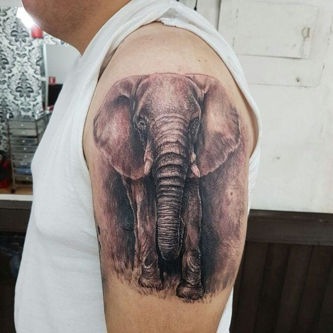 155 Elephant Tattoos Design Ideas With Meaning Wild