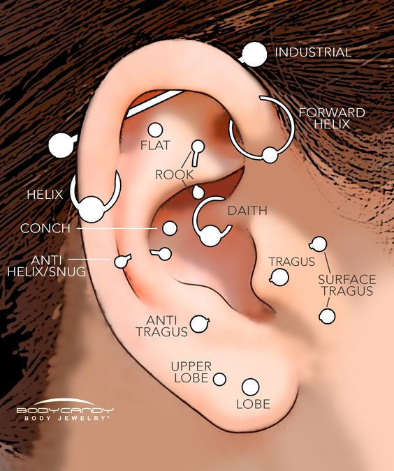 14 Types Of Ear Piercings How Much Does It Hurt Wild Tattoo Art