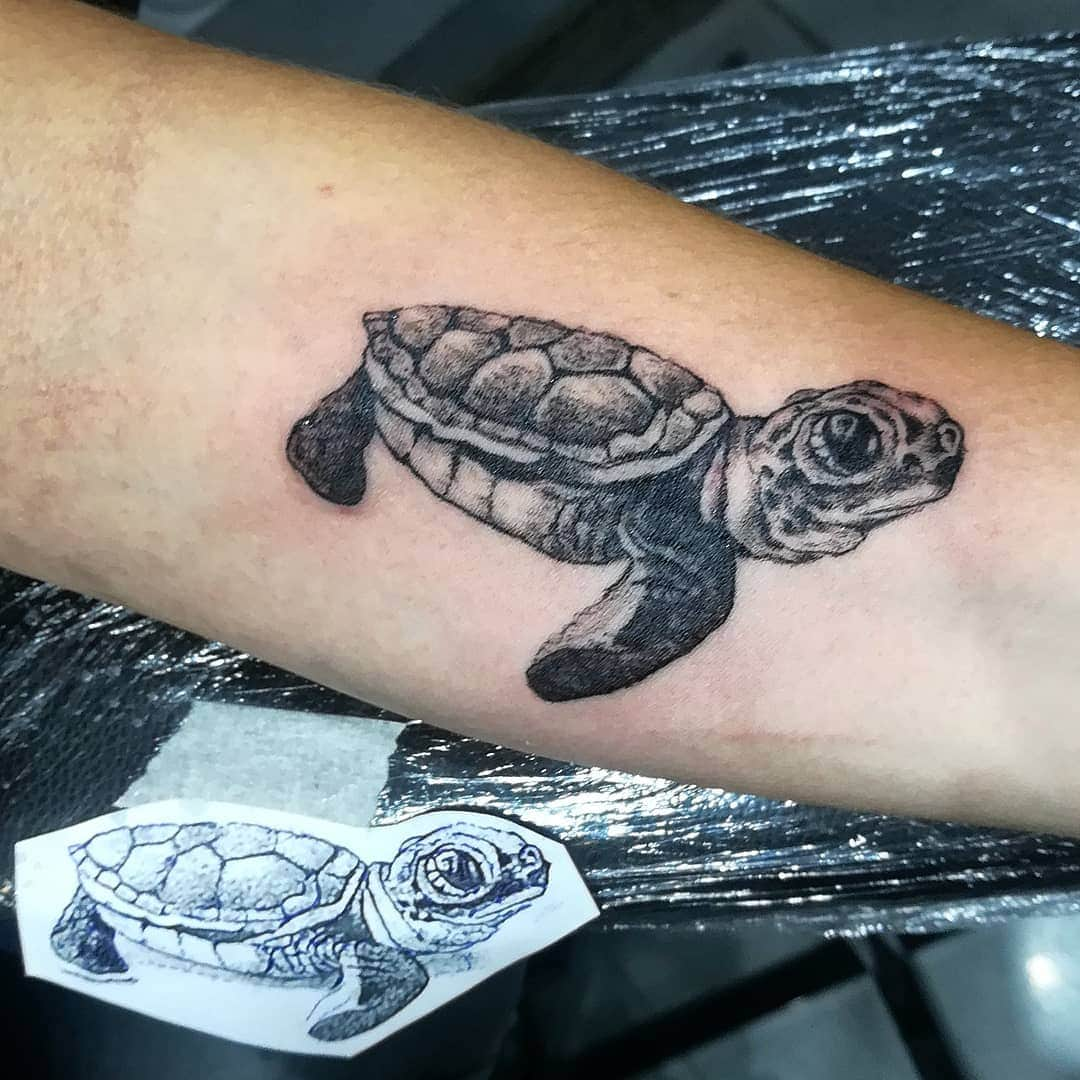1bdfbdfd2bb70 Turtles represent stability in life, protection, and innocence similar to  the small birds.