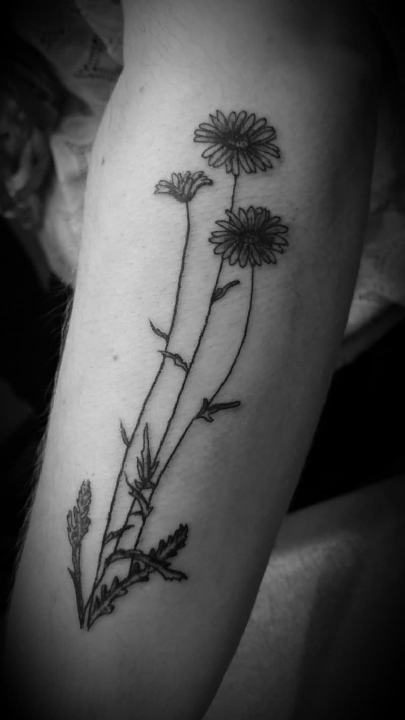 125 Daisy Tattoo Ideas You Can Go For Meanings Wild Tattoo Art