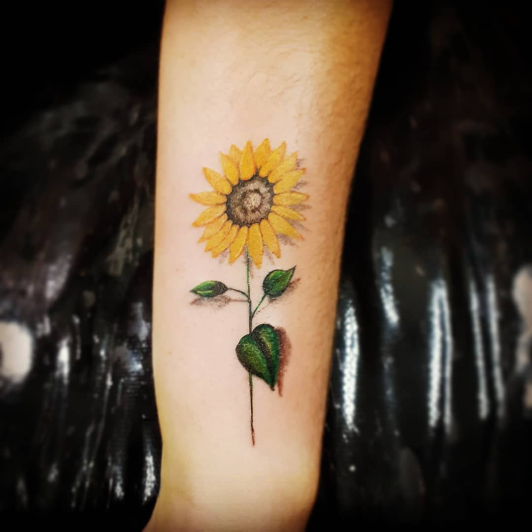 Simple Sunflower with Stem
