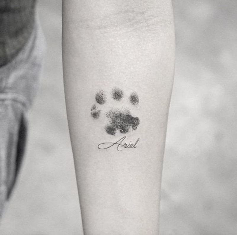 Paw Print with a Name